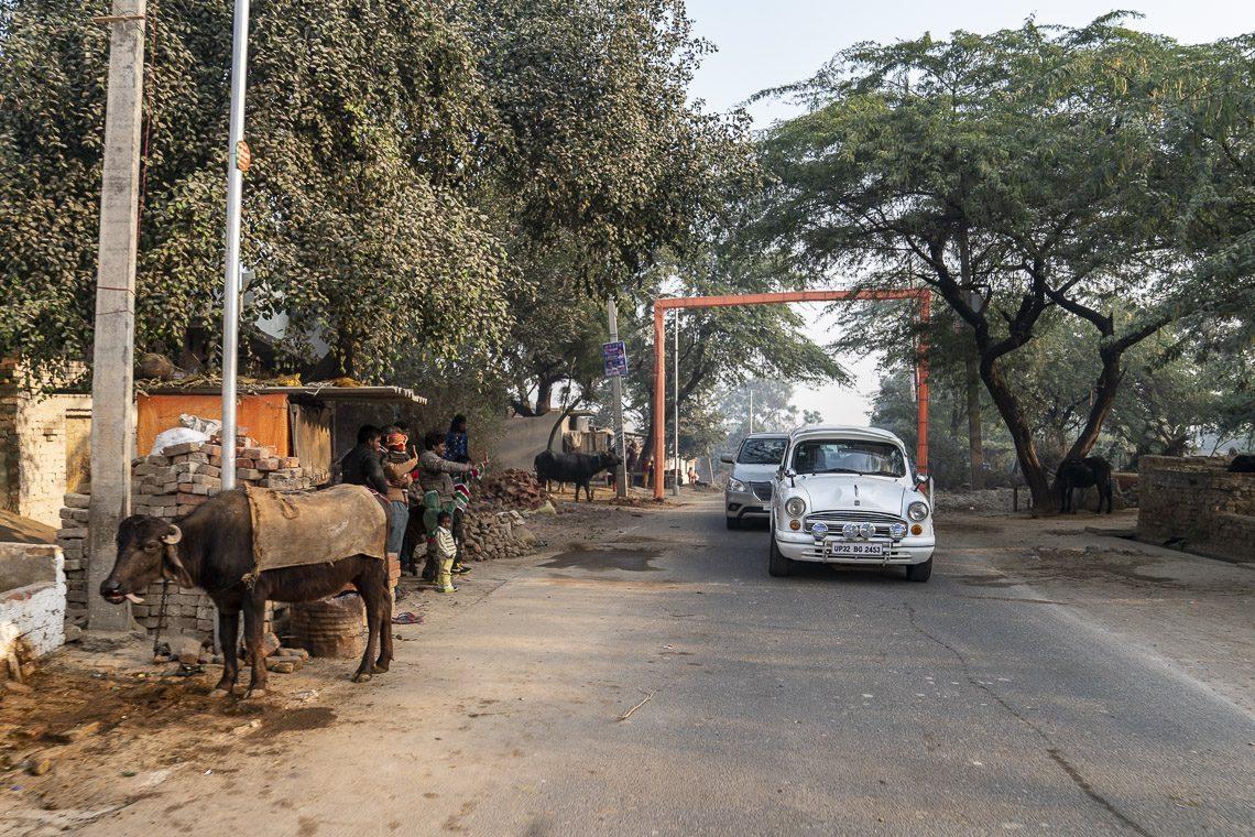 2017 11 06 Dharamsala11 A7 R3829